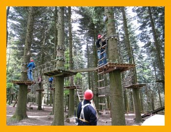 aktiv sein im Kletterpark